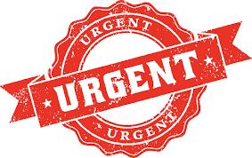 Vietnam Urgent (rush) Visa