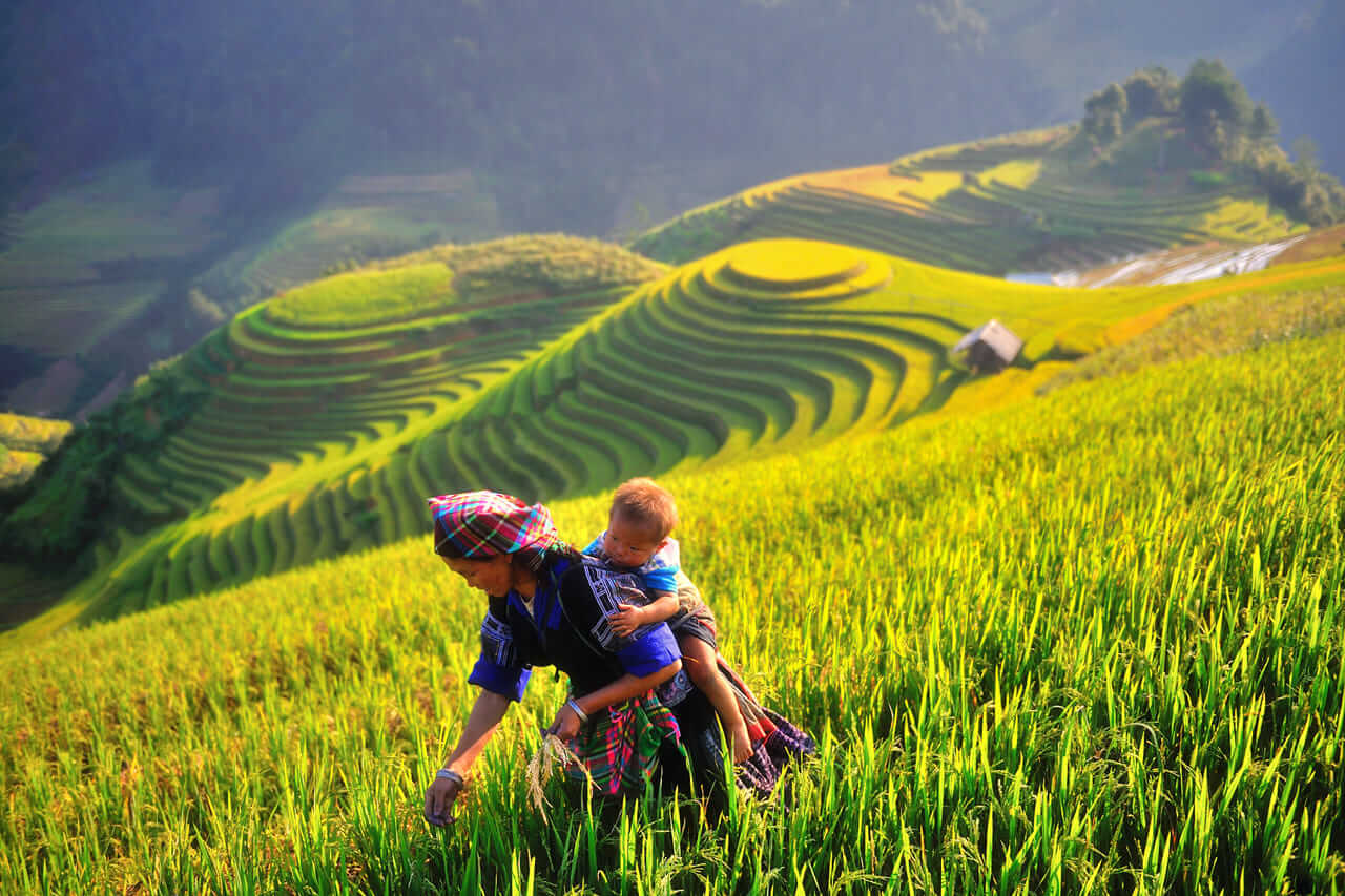 mu cang chai - best places to visit Vietnam in September