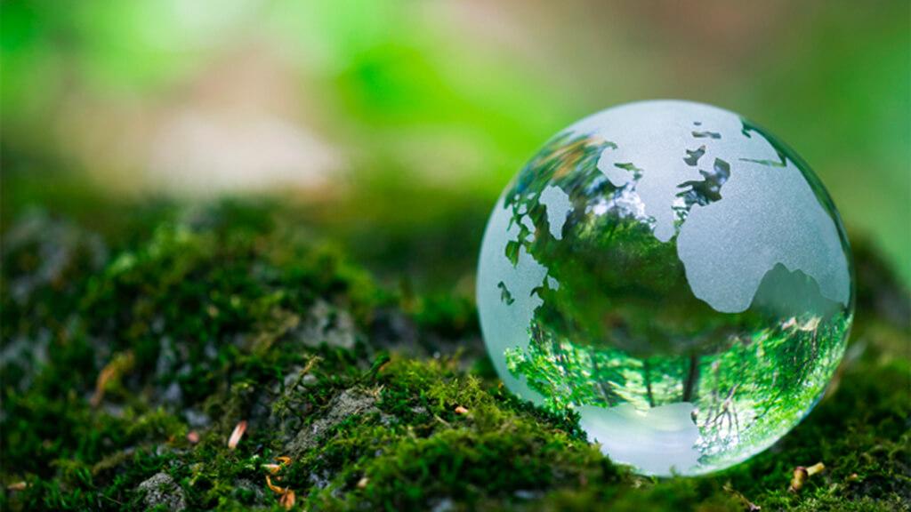 Top 10 lời khuyên cho ngày Trái Đất ý nghĩa bạn cần biết