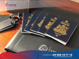 Best way to get Vietnam visa on arrival from Grenada