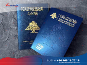 How to get Vietnam visa on arrival from Lebanon?