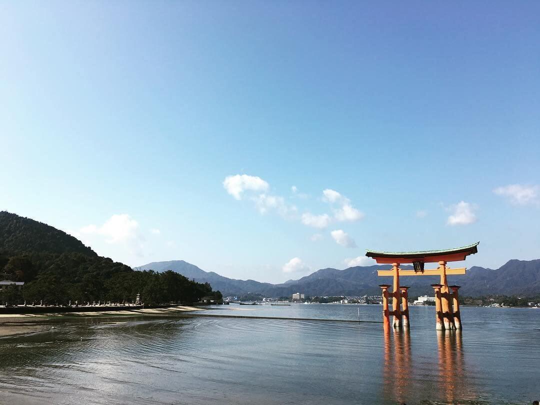 Điều giúp bạn xin visa du học Nhật Bản thành công chính là hiểu rõ các thủ tục